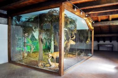 Ecomuseo naturalistico Gromo