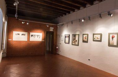 museo-darte-contemporanea-mostra-luzzana