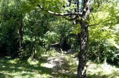 Sentiero Colle di Ranica