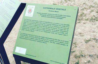 Giuliano Mauri Cattedrale Vegetale Oltre il Colle