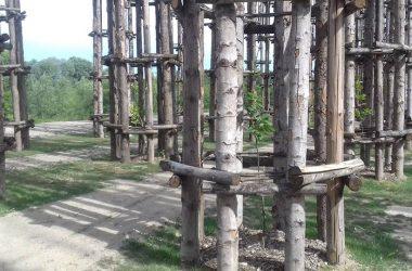 Storia Cattedrale Vegetale Oltre il Colle
