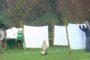 Foto Il presepe dei lavandai alle Ghiaie - Paladina