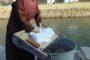 atichi mestieri Il presepe dei lavandai alle Ghiaie - Paladina