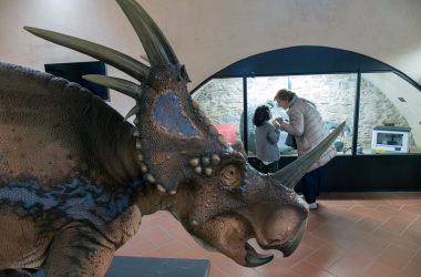 Dinosauri Museo Civico di Scienze Naturali di Bergamo