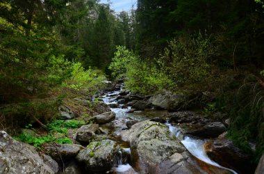 Il fiume Goglio