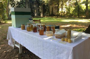 Il miele del Castello di Lurano