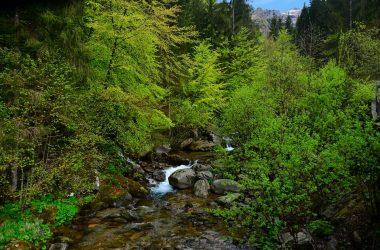 Immagini Valle del Goglio - Valgoglio