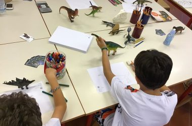 Laboratoti didattici Museo Civico di Scienze Naturali di Bergamo