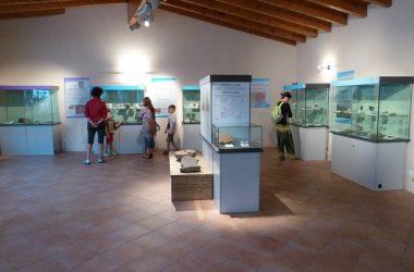 Museo Antica Parra Parre