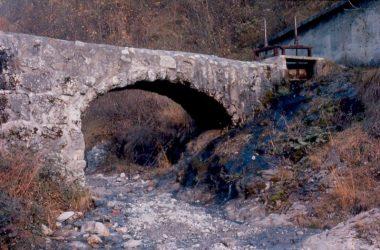 Seriola Concossola Gandino