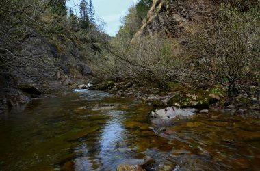 Valle del Goglio - Valgoglio Foto