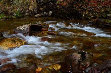 Valle del Goglio - Valgoglio Immagini