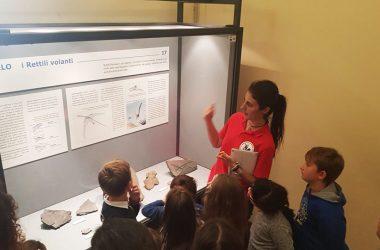Visite al Museo Civico di Scienze Naturali di Bergamo